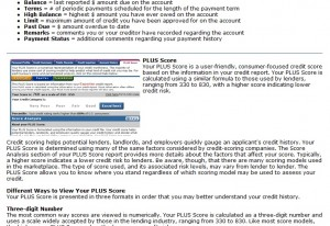 Experian on employers and credit scores
